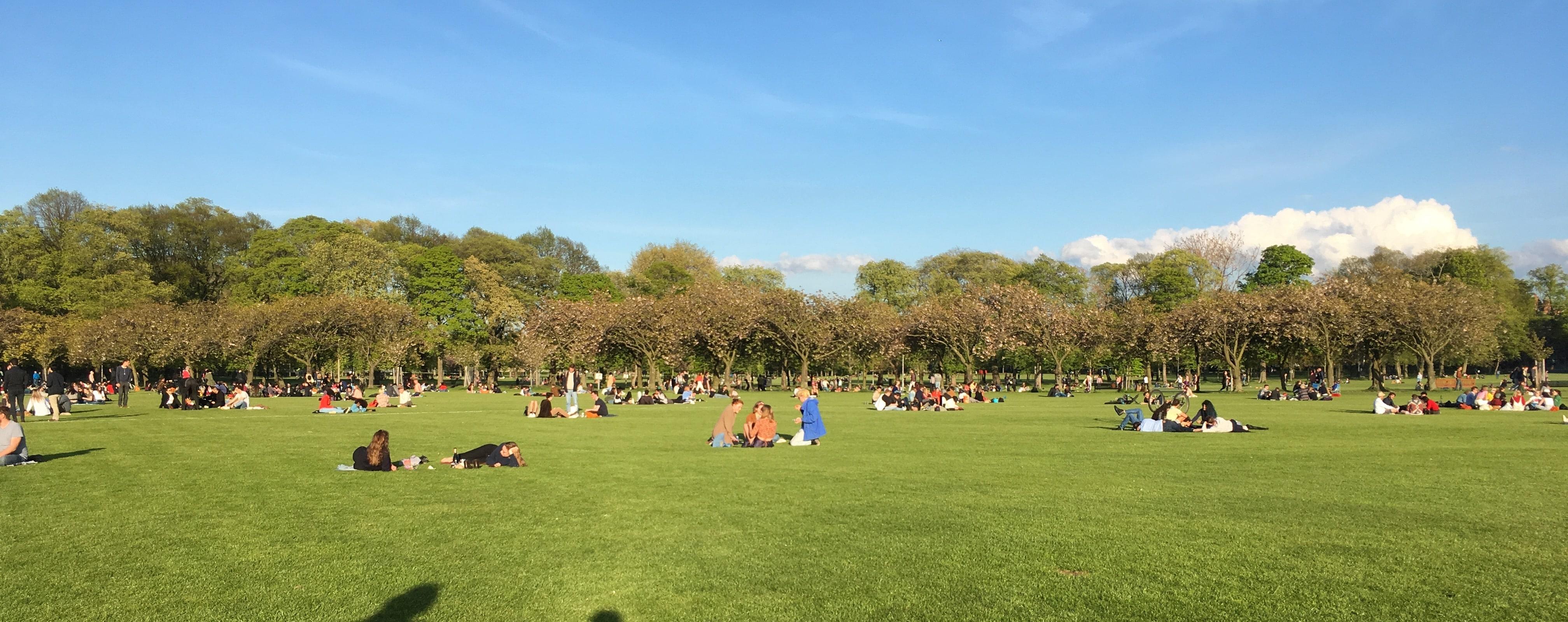 盛夏的meadows上三五成群的人在闲聊,老外很喜欢这种户外的社交;尤其是出太阳的时候,草坪上是密密麻麻的人和狗