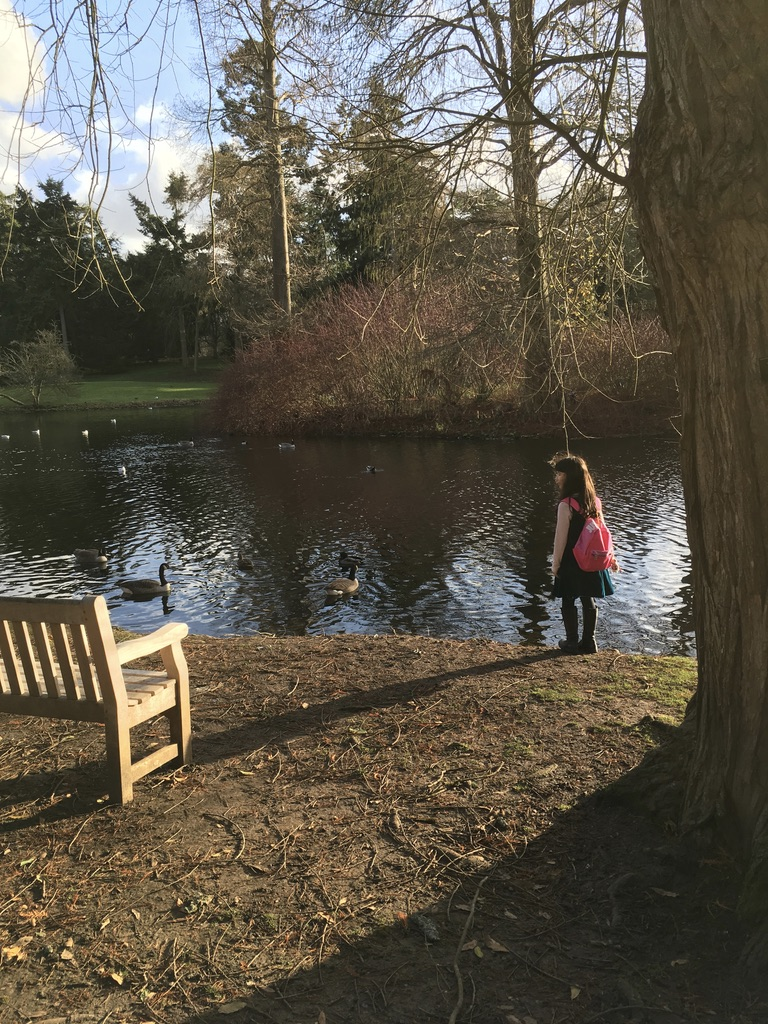 站在河边看鸭子的小女孩