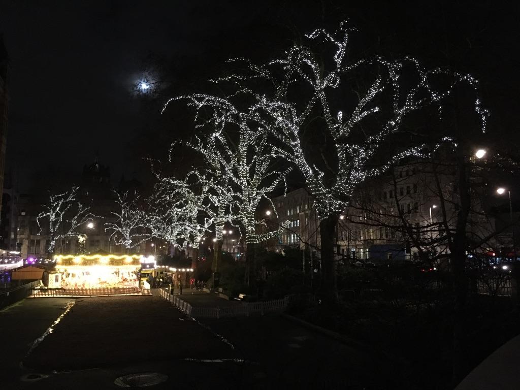 快要闭馆了我才出来,天已经黑了,这些树穿上圣诞新衣也是美美哒