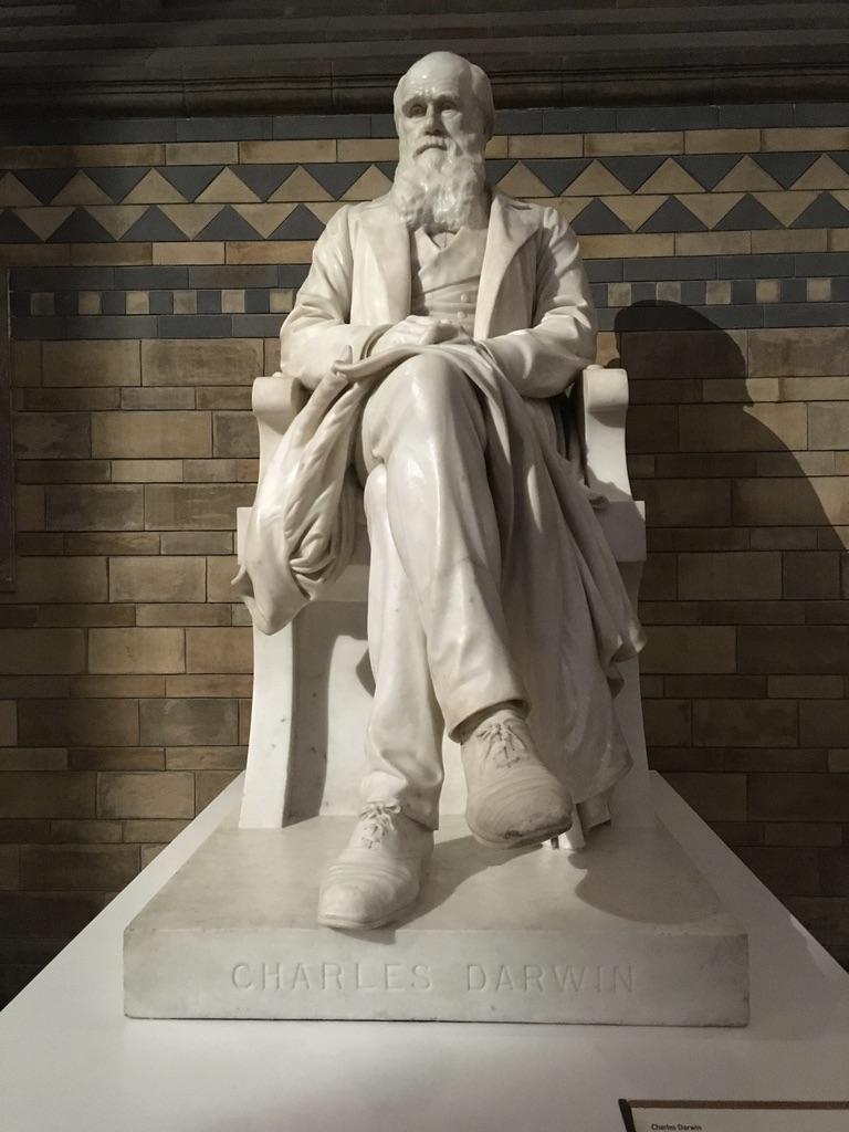 台阶正中央贡着最伟大的生物学家达尔文