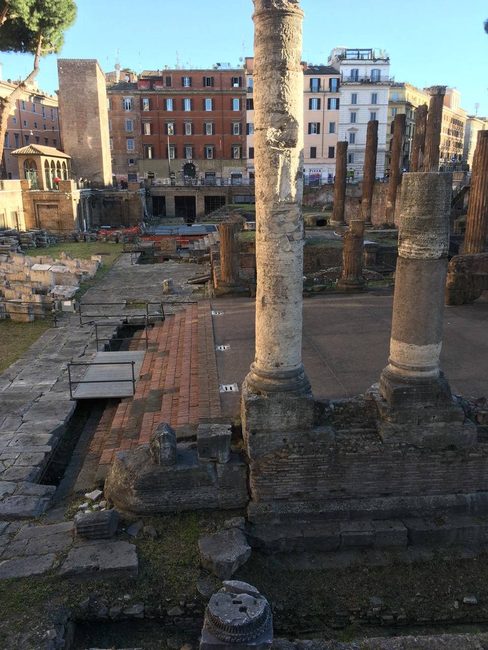 在罗马到处都能看到这样的遗迹